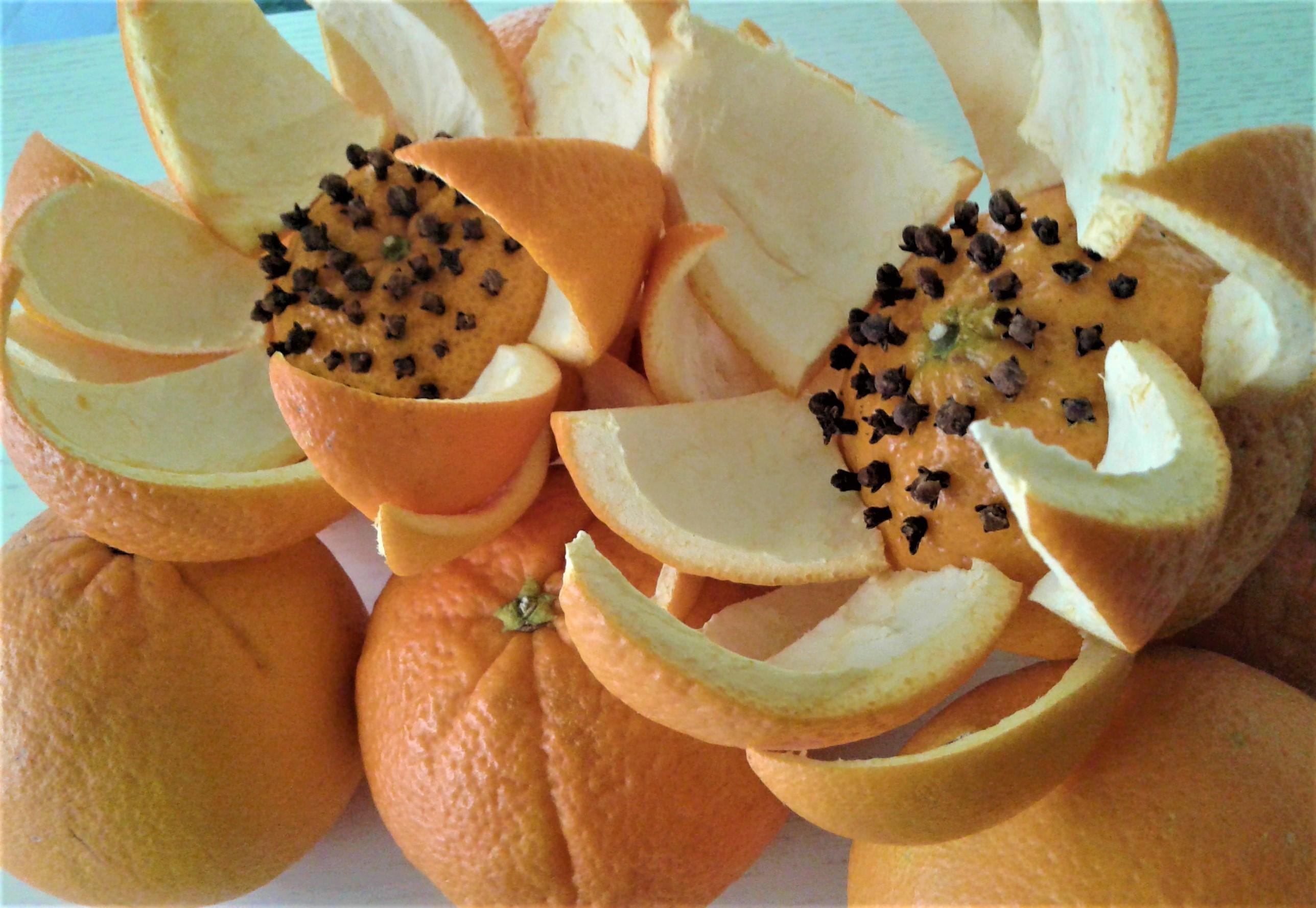 arancio in fiore